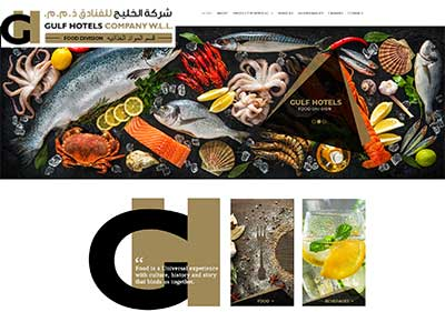 Professional Web Designers Qatar